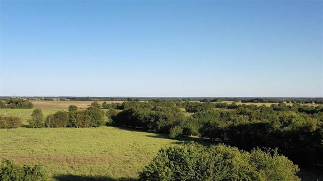 TDN N Fm 1158, Annona, TX 75550 (MLS #14461878) :: Real Estate By Design