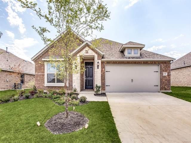 6101 Horsetail Drive, Mckinney, TX 75071 (MLS #14462349) :: Keller Williams Realty