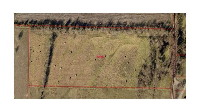 TBD County Rd 1149, Celeste, TX 75423 (MLS #14463065) :: Real Estate By Design