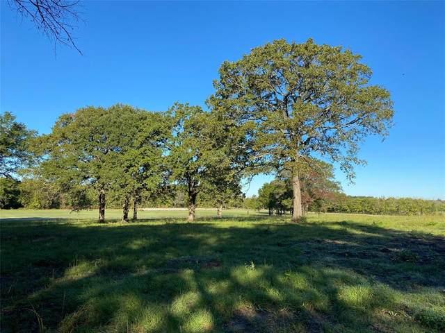 16.4 Ac Farm Road 1536, Dike, TX 75437 (MLS #14463162) :: The Kimberly Davis Group