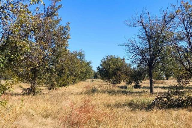 000 County Road 77, Vernon, TX 76384 (MLS #14463423) :: The Kimberly Davis Group