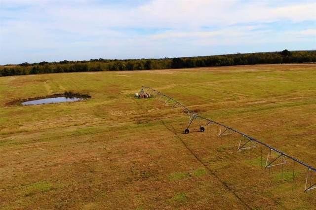 350 County Road 2125, Cooper, TX 75432 (MLS #14465247) :: Maegan Brest | Keller Williams Realty