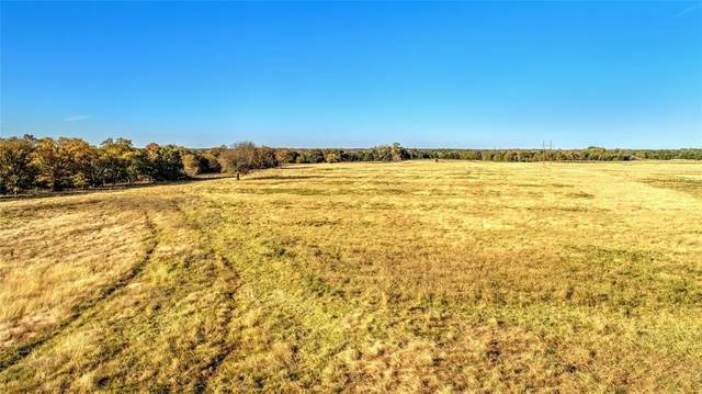 19+ AC Brooks Lane, Sadler, TX 76264 (MLS #14465384) :: Frankie Arthur Real Estate