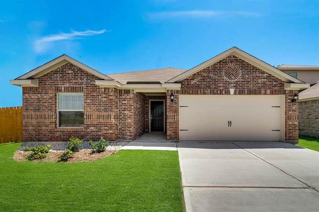 3107 Chillingham Drive, Forney, TX 75126 (MLS #14466192) :: The Tierny Jordan Network