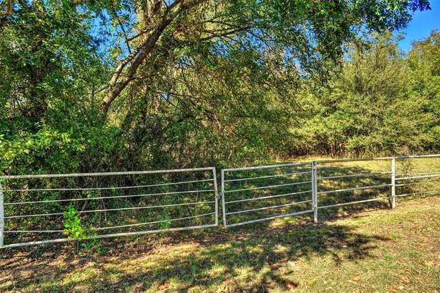 8667 Southmayd Road, Collinsville, TX 76233 (MLS #14466376) :: The Kimberly Davis Group