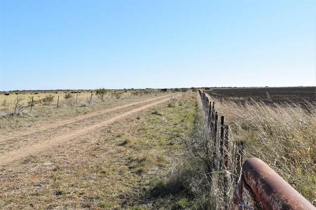 TBD 206 Highway, Coleman, TX 76834 (MLS #14466574) :: The Kimberly Davis Group