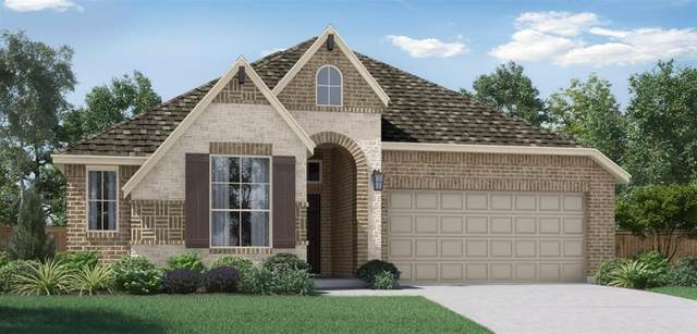 221 Tallgrass Drive, Lavon, TX 75166 (MLS #14467009) :: Potts Realty Group