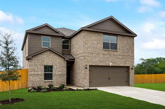 317 Golden Sands Lane, Princeton, TX 75407 (MLS #14467134) :: The Paula Jones Team | RE/MAX of Abilene