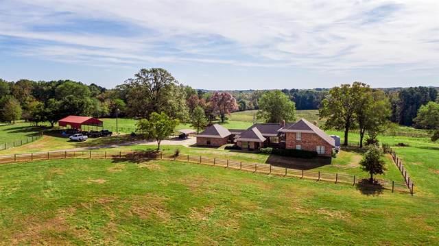 4650 S Hwy-144, Daingerfield, TX 75638 (MLS #14467136) :: Real Estate By Design
