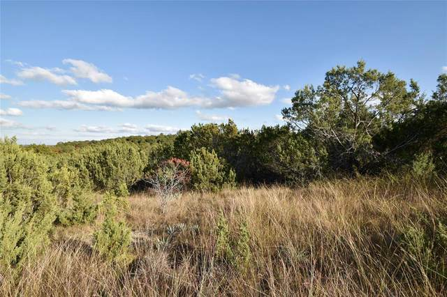 TBD Anchors Way, Bluff Dale, TX 76433 (MLS #14467907) :: The Kimberly Davis Group