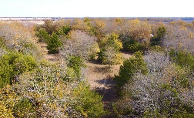 TBD Kentucky Town Road, Whitewright, TX 75491 (MLS #14468406) :: The Chad Smith Team