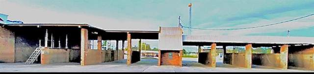 817 Shelbyville Street, Center, TX 75935 (MLS #14468722) :: Real Estate By Design