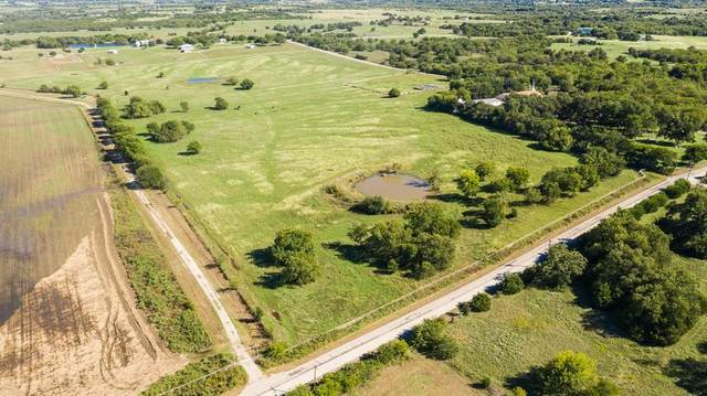 TBD County Road 664, Farmersville, TX 75442 (MLS #14471352) :: The Kimberly Davis Group
