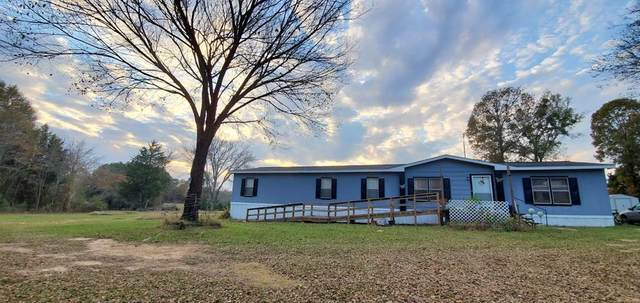 1711 Vz County Road 4605, Ben Wheeler, TX 75754 (MLS #14471443) :: The Mauelshagen Group