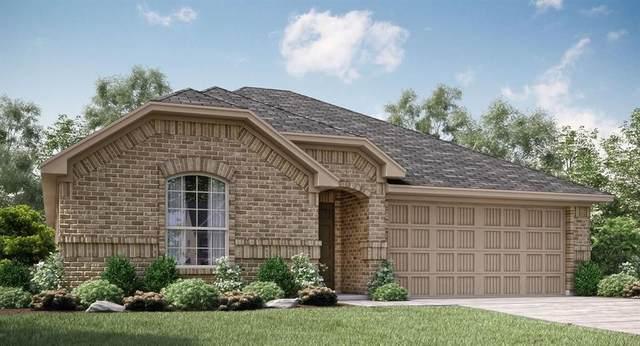 11440 Alpine Springs Drive, Aubrey, TX 76227 (MLS #14472107) :: The Kimberly Davis Group