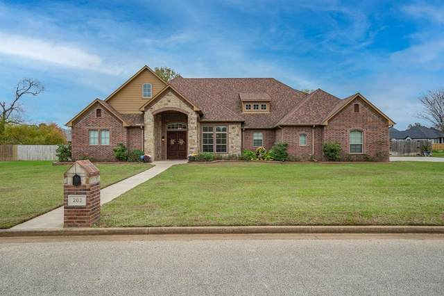 203 Coventry Street, Bullard, TX 75757 (MLS #14472141) :: The Paula Jones Team | RE/MAX of Abilene