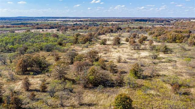 0 County Rd 1990, Chico, TX 76431 (MLS #14472336) :: The Heyl Group at Keller Williams