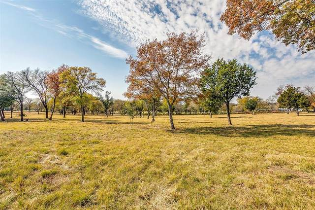 1000 Oak Bend Lane, Weatherford, TX 76088 (MLS #14472663) :: Maegan Brest | Keller Williams Realty