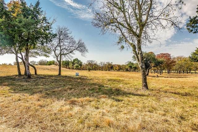 1008 Oak Bend Lane, Weatherford, TX 76088 (MLS #14472809) :: Premier Properties Group of Keller Williams Realty