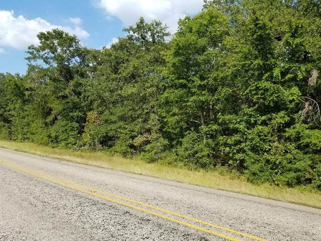0000 Fm 288, Quitman, TX 75783 (MLS #14474397) :: Real Estate By Design