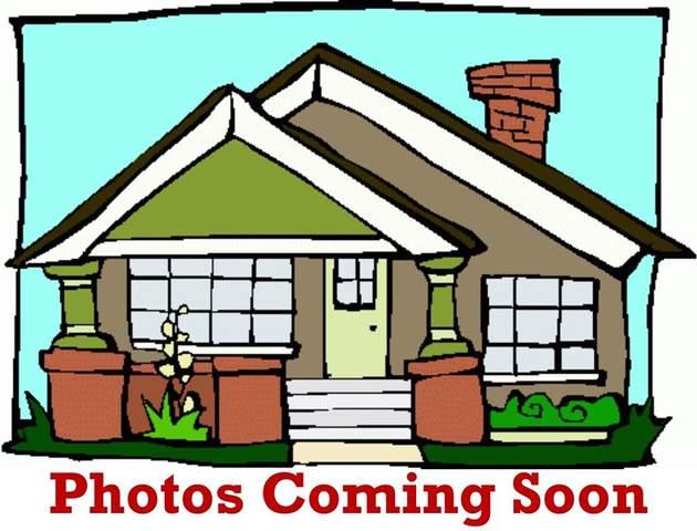 TBD Albert Broadfoot Street, Bonham, TX 75418 (MLS #14474597) :: The Mauelshagen Group