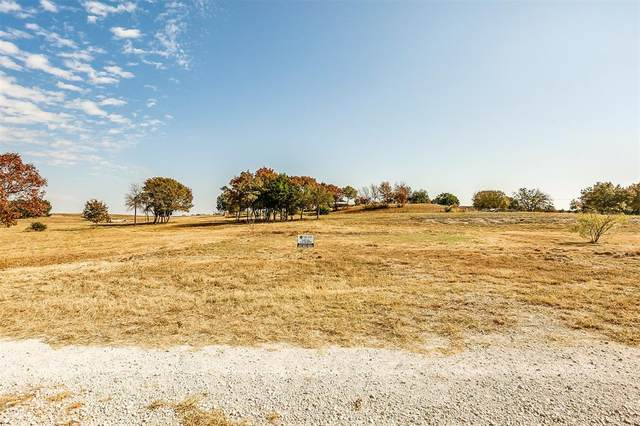 1015 Oak Bend Lane, Weatherford, TX 76088 (MLS #14474914) :: The Hornburg Real Estate Group