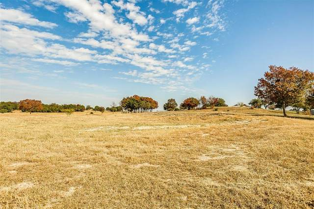 1011 Oak Bend Lane, Weatherford, TX 76088 (MLS #14474933) :: Jones-Papadopoulos & Co