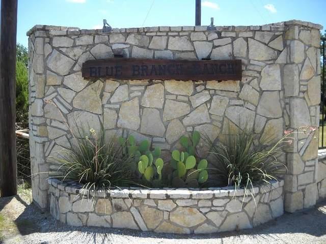 3507 Farm Land Court, Granbury, TX 76048 (MLS #14474978) :: The Kimberly Davis Group
