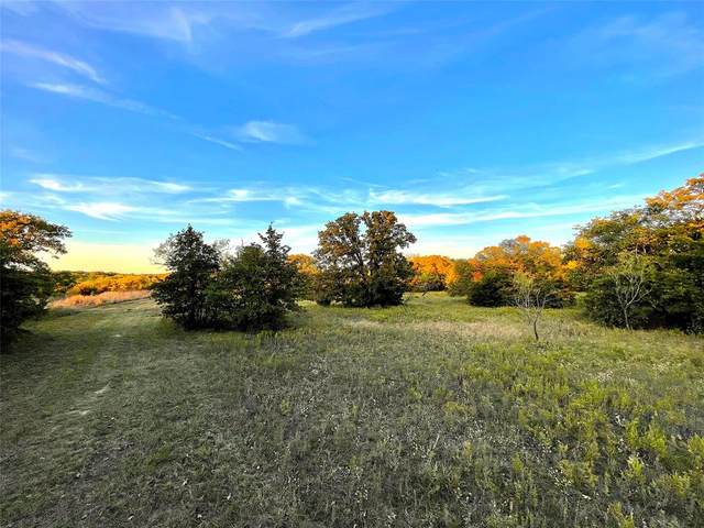 TBD B Indian Camp, Weatherford, TX 76088 (MLS #14475017) :: The Heyl Group at Keller Williams