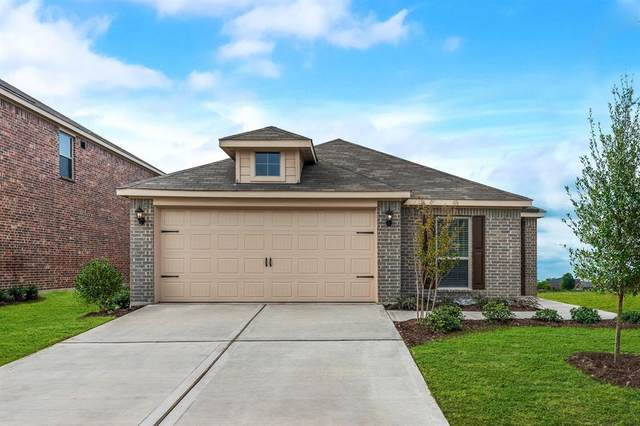 116 Bluebonnet Drive, Sanger, TX 76266 (MLS #14475077) :: The Kimberly Davis Group