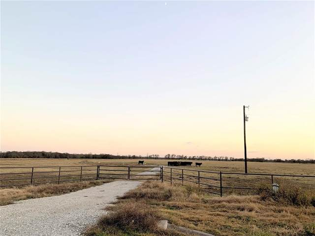 24084 Fm 902, Collinsville, TX 76233 (MLS #14475409) :: The Kimberly Davis Group