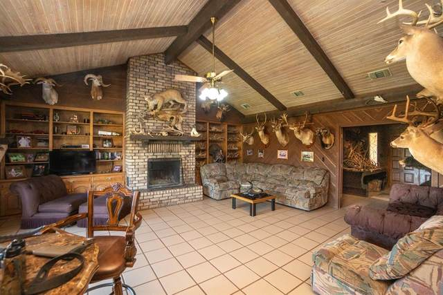 11498 N Hwy 259 Highway N, Omaha, TX 75571 (MLS #14475820) :: Robbins Real Estate Group