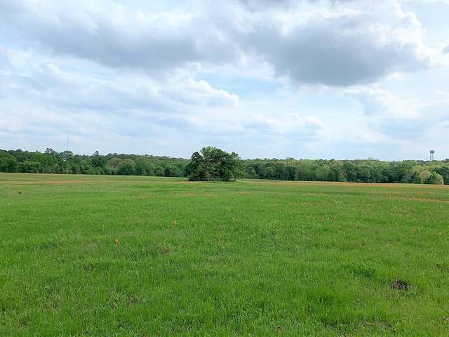 4 N Hwy 19, Athens, TX 75751 (MLS #14476373) :: The Mauelshagen Group