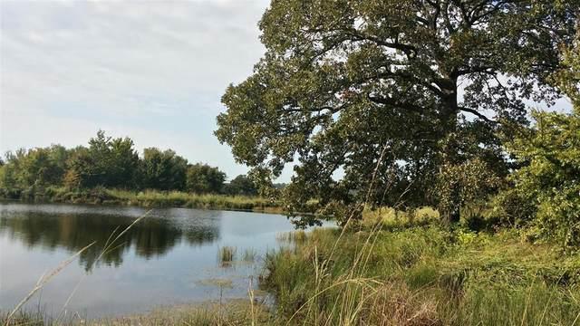 170 Lago Vista Drive, Athens, TX 75752 (MLS #14476806) :: The Mauelshagen Group