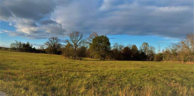 TBD Rains County Road 3345, Emory, TX 75440 (MLS #14476812) :: The Mauelshagen Group