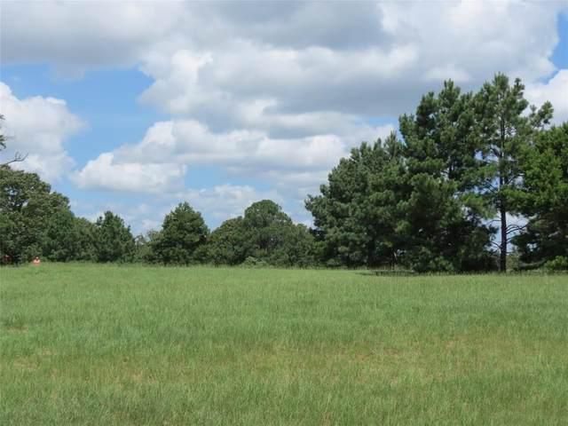 24002 Wildflower Circle, Lindale, TX 75771 (MLS #14476845) :: The Tierny Jordan Network