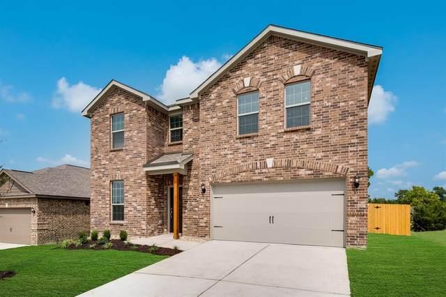 2101 Dahlia Way, Princeton, TX 75407 (MLS #14476969) :: The Paula Jones Team | RE/MAX of Abilene