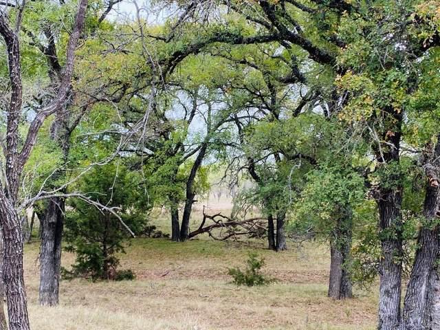 TBD N County Road 550, Mullin, TX 76864 (MLS #14477348) :: The Mauelshagen Group