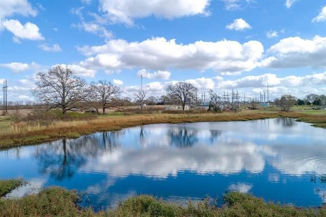 4101 Vz County Road 1110, Grand Saline, TX 75140 (MLS #14477431) :: The Kimberly Davis Group