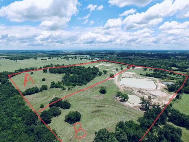 TBD A County Road 1109, Brashear, TX 75420 (MLS #14477856) :: Robbins Real Estate Group