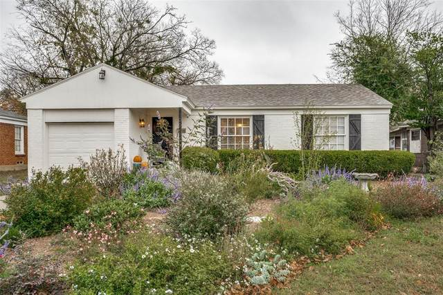 10628 Sylvia Drive, Dallas, TX 75228 (MLS #14478608) :: The Hornburg Real Estate Group