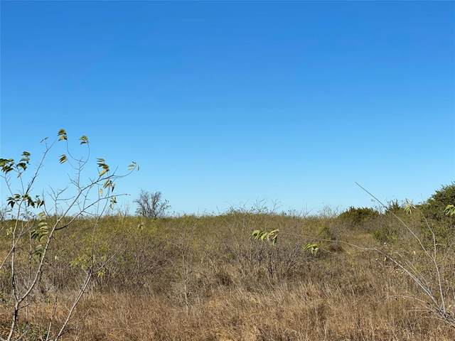 TBD Hcr 1207, Whitney, TX 76692 (MLS #14478695) :: RE/MAX Pinnacle Group REALTORS