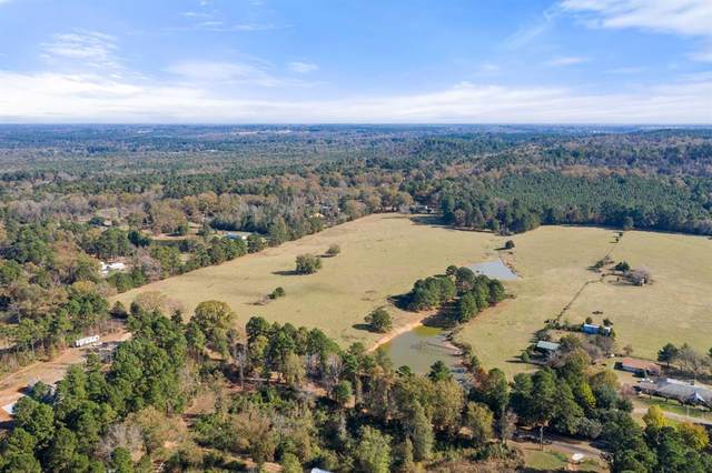 TBD Cr 1127, Daingerfield, TX 75638 (MLS #14478717) :: The Mauelshagen Group