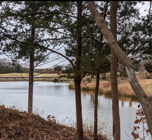 280 Roaring Fork Circle, Gordonville, TX 76245 (MLS #14478810) :: The Hornburg Real Estate Group