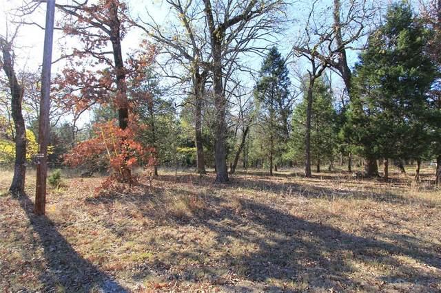 129 Cedar Oaks Drive, Mabank, TX 75156 (MLS #14479004) :: The Mauelshagen Group