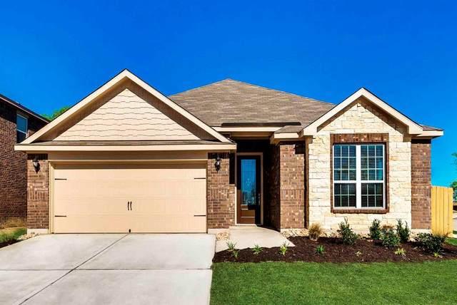 805 Juneberry Drive, Denton, TX 76207 (MLS #14479117) :: Trinity Premier Properties