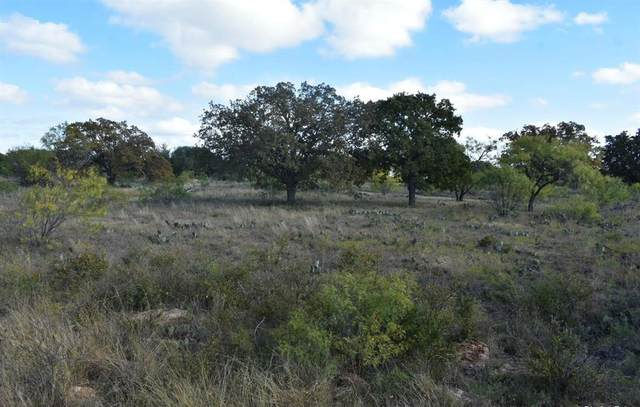 TBD Ships Wheel Tbd, Brownwood, TX 76801 (MLS #14480106) :: Feller Realty