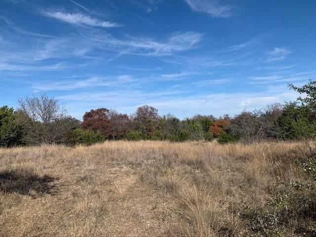 1945 Lakeside, Bluff Dale, TX 76433 (MLS #14480496) :: The Mauelshagen Group
