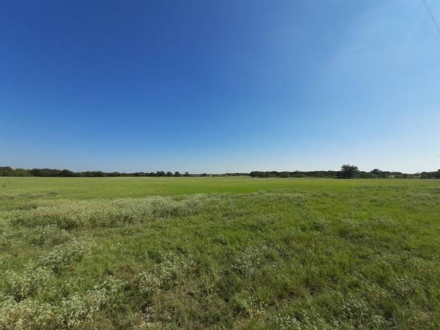 Tr # 6 County Road 416, Comanche, TX 76442 (MLS #14480550) :: Bray Real Estate Group
