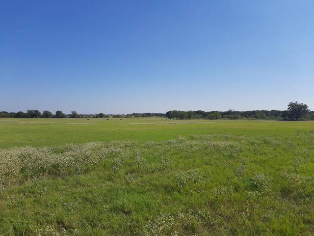 Trac 7 E County Road 416, Comanche, TX 76442 (MLS #14480581) :: Bray Real Estate Group